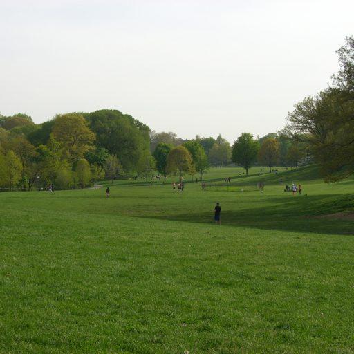cropped-long-meadow-april.jpg