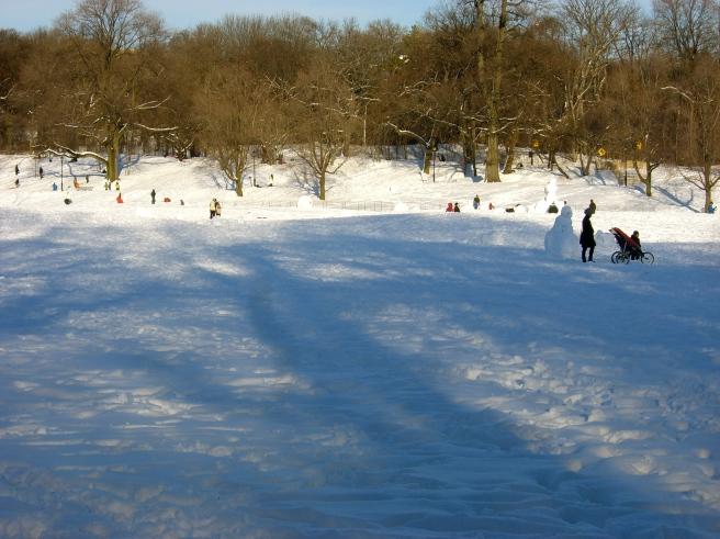 Feb. Snow I, 2010