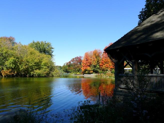 Lake Shelter Fall