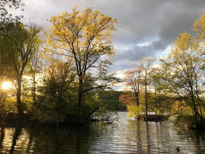 THE LAKE AT 7 PM 4.2020